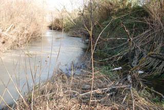 1 fiume saline discarica